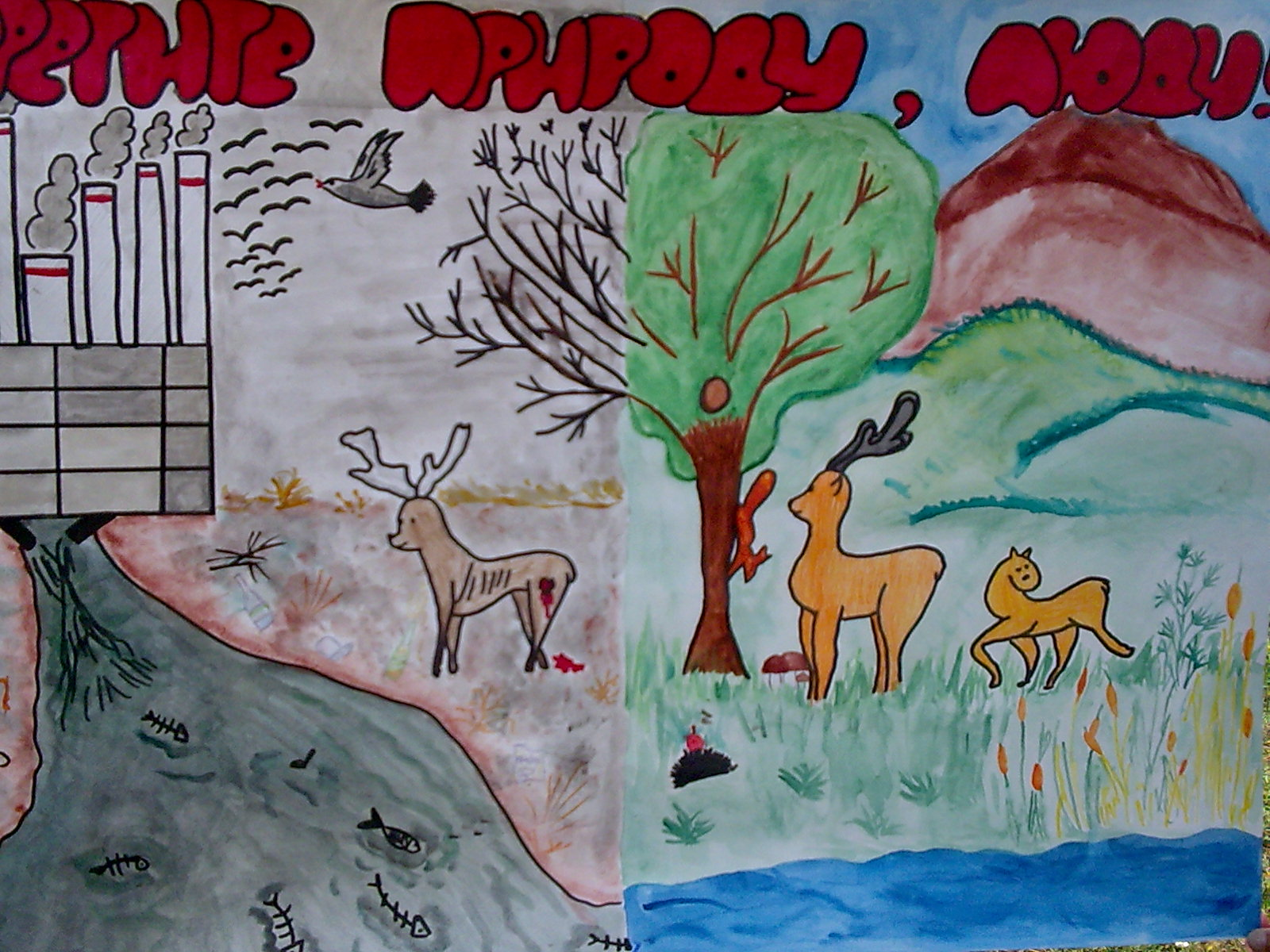 Конкурс детских рисунков «Мы дети природы». Воспитателям